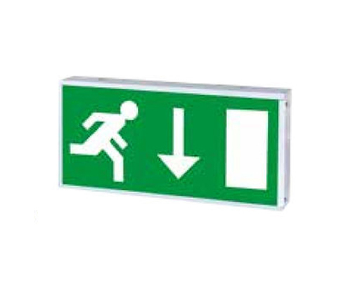 Ozone LED Emergency Exit box